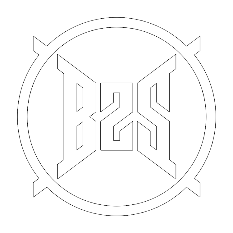 B2S Records - Logo
